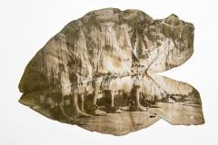 terra terreno território - Dani Sandrini